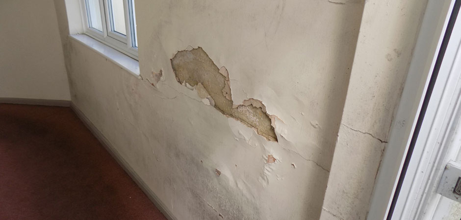 Damp damage to Plasterwork
